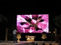 P6 Indoor LED Screen For Fixed