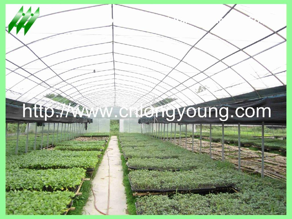 plastic film greenhouse 1