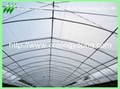 plastic film greenhouse 2