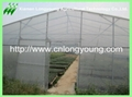 plastic film greenhouse 5