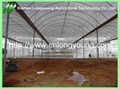 galvanized pipe greenhouse