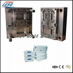 Hot!!! Plastic Injection Crisper Mould