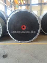 Nylon Conveyor Belt China Manufacturer