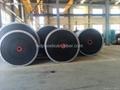 Nylon Conveyor Belt China Manufacturer 2