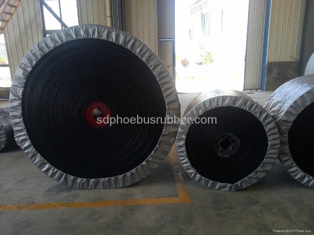 Nylon Conveyor Belt China Manufacturer 3