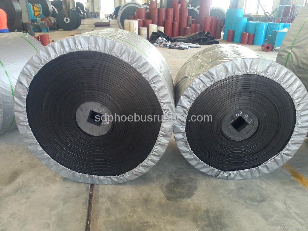 Nylon Conveyor Belt China Manufacturer 4