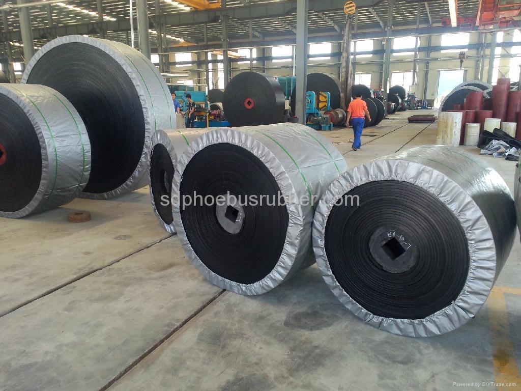 Nylon Conveyor Belt China Manufacturer 5