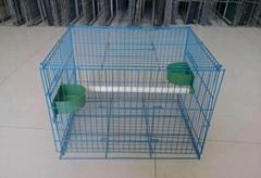 factory price bird cage