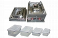 Plastic injection crisper mould-1 1