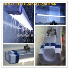IP66 Tri-proof LED lighting---1500MM 50W (Hot Product - 7*)