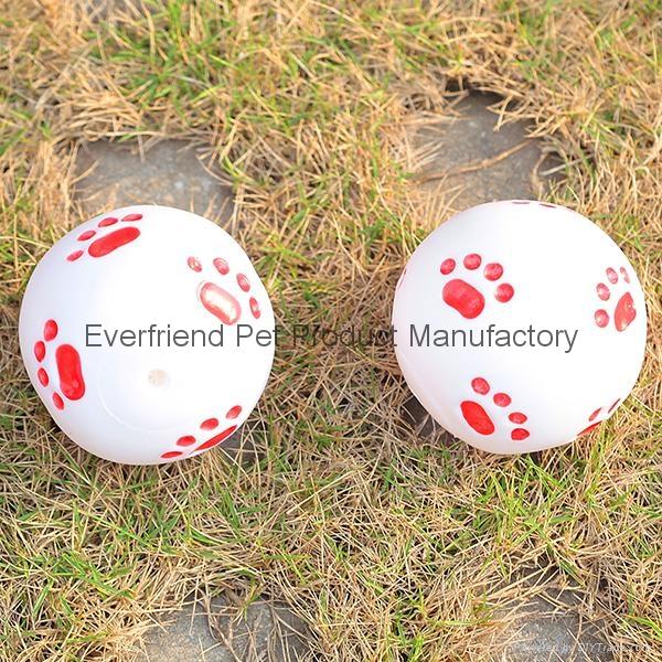 宠物玩具球 1