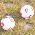 宠物玩具球 5