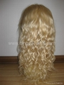 100% human hair full lace wig & lace front wig  3
