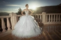 2014 New Sweetheart Beads Floor Length Wedding Dress NW14360