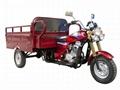 tricycle 3 wheeler 3 wheel motorcycle three Wheeler auto rickshaw15 1