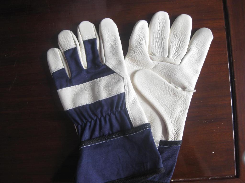 cowhide gloves 1