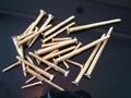铜木螺丝 1