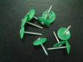 Plastic cap Ring Shank Nails
