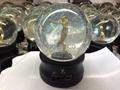 Plastic Snow Globes/Domes, Water Balls 4