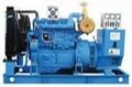 250KW上柴股份柴油发电机组 3