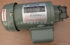 維良齒輪油泵ROP-13A-1/4