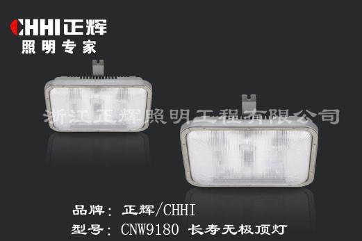 CNW9180長壽無極頂燈 1