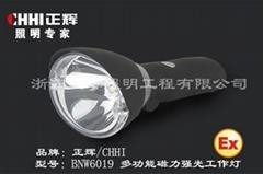 BNW6019防爆强光手电
