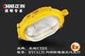 BYC6120防爆強光氾光燈