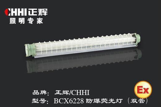 BCX6228防爆熒光燈 1