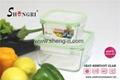Glass Food Storage Box Set