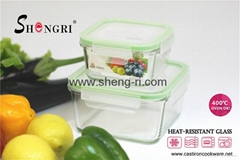 Glass Food Storage Box Set