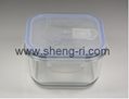 Glass Food Container Set with lock lid with valve