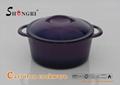 Enamel Cast Iron Casseroles Cookwares Customiz Color