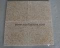 Granite Floor Tile 3