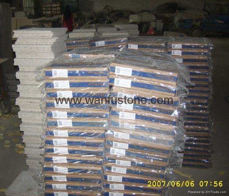 Granite Floor Tile 4
