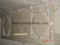 Granite Kitchen Countertops for prefab