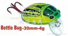 Bettle bug