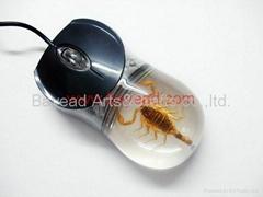 昆虫琥珀鼠标