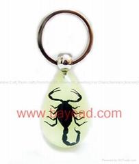 蠍子王昆虫琥珀鑰匙扣 不變形不變質飾品