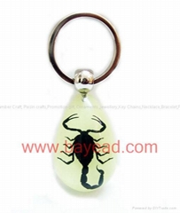 Scorpion insect amber keychains promotion gifts priemium gift