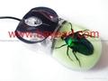 夜光昆虫琥珀鼠标 蝎子琥珀鼠标 电脑耗材 特色鼠标 商务送礼 2