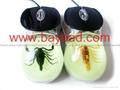 夜光昆虫琥珀鼠标 蝎子琥珀鼠标 电脑耗材 特色鼠标 商务送礼 3