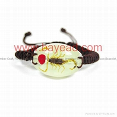 Real Insect Amber Bracelet novel Fashional Jewelry
