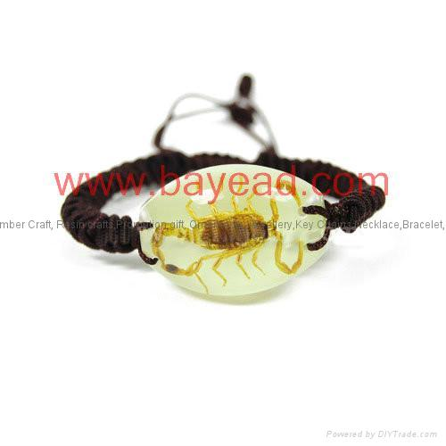Real Insect Amber Bracelet novel Fashional Jewelry 2