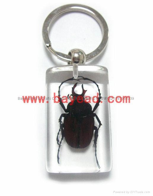 昆虫琥珀饰品 2