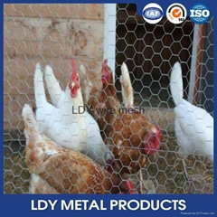 Chinese Factory Direct Sale PVC Coated Galvanized Hexagonal Wire Mesh