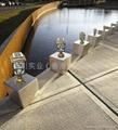 Solar chapiter light