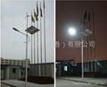 Solar/Wind hybrid generatin street lamp system