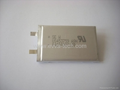 Sony Polymer Battery US4