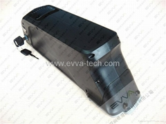 48V Electric Bicycle battery Sony batteries 11.6Ah